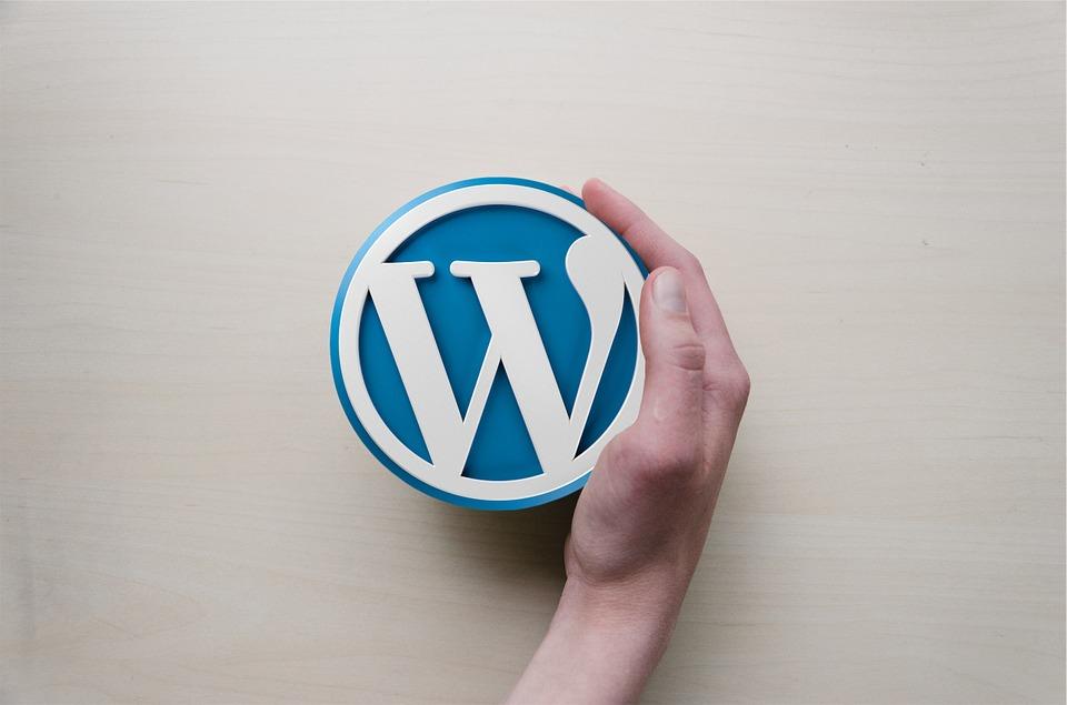 Choisir le bon expert sur le CMS WordPress