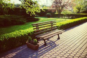 Lutter contre les chenilles de façon naturelle: nos 10 astuces