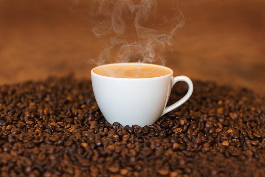 Marc de café : Comment utiliser le marc de café au jardin et à la maison ?