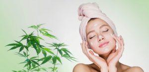 Huile de CBD : les bienfaits pour la peau